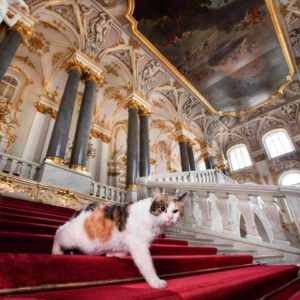ON-LINE VISIT TO THE HERMITAGE MUSEUM